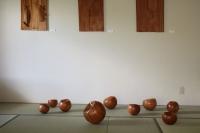 20130512和室ボール.JPG